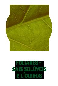 ICONES-FOLIARES